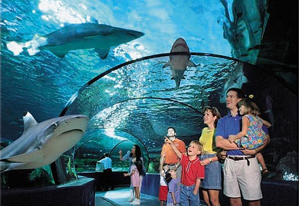 Meeting Rooms At Blue Planet Aquarium Longlooms Road