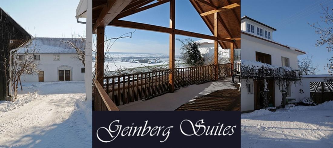 Geinberg Suites & ViaNova Event Center meeting rooms