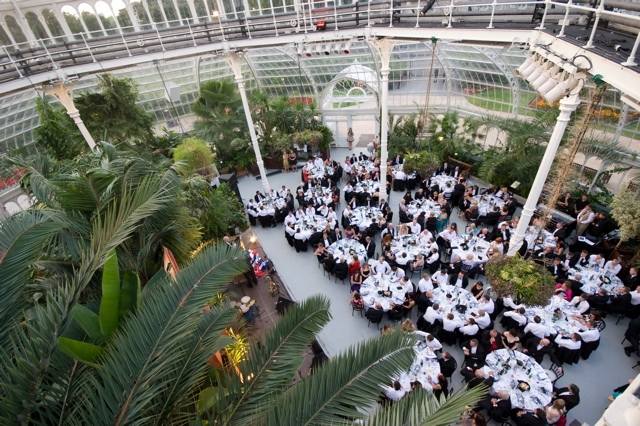 Meeting Rooms At Sefton Park Palm House Sefton Park Palm House Liverpool United Kingdom