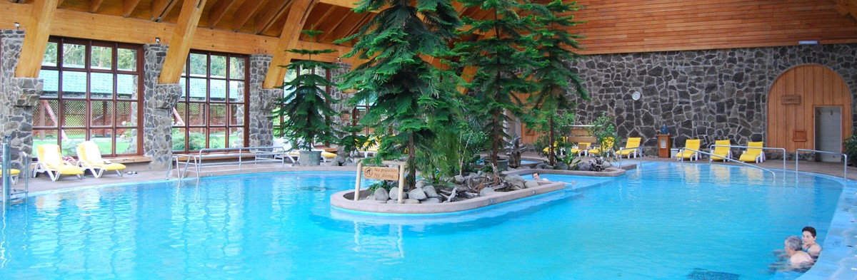 Termas Puyehue Hotel & Thermal Spa meeting rooms