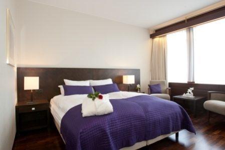 Radisson Blu Saga Hotel meeting rooms