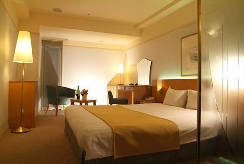 Phoenician Plaza Hotel meeting rooms